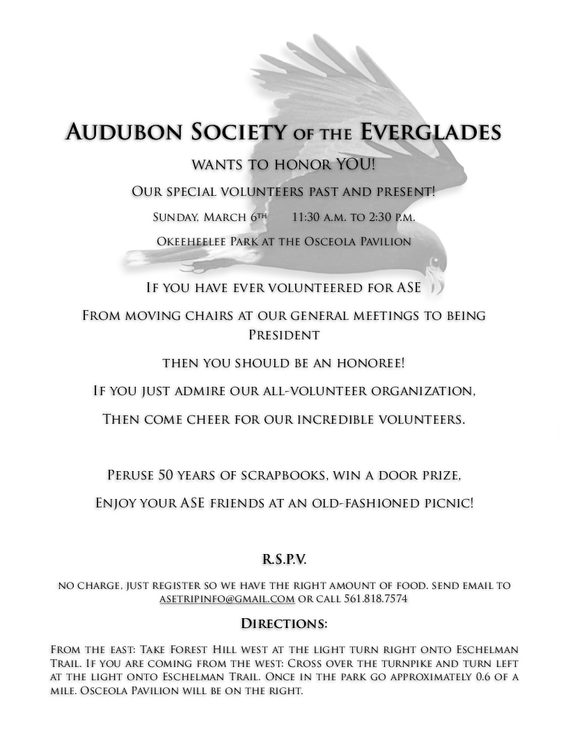 ASE logo invitation